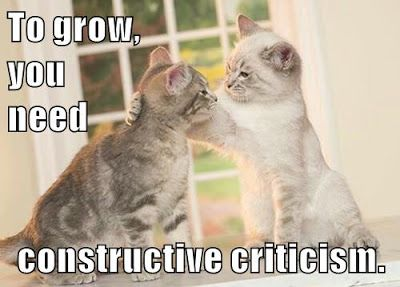 To grow, you need constructive criticism. One cat helps another.