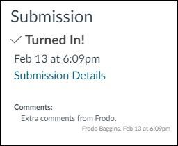 Text Entry Assignment Submission Details