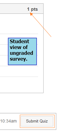 student_view_ungraded_survey.png