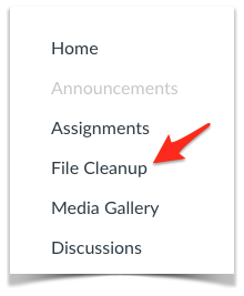 File Cleanup link in course navigation.