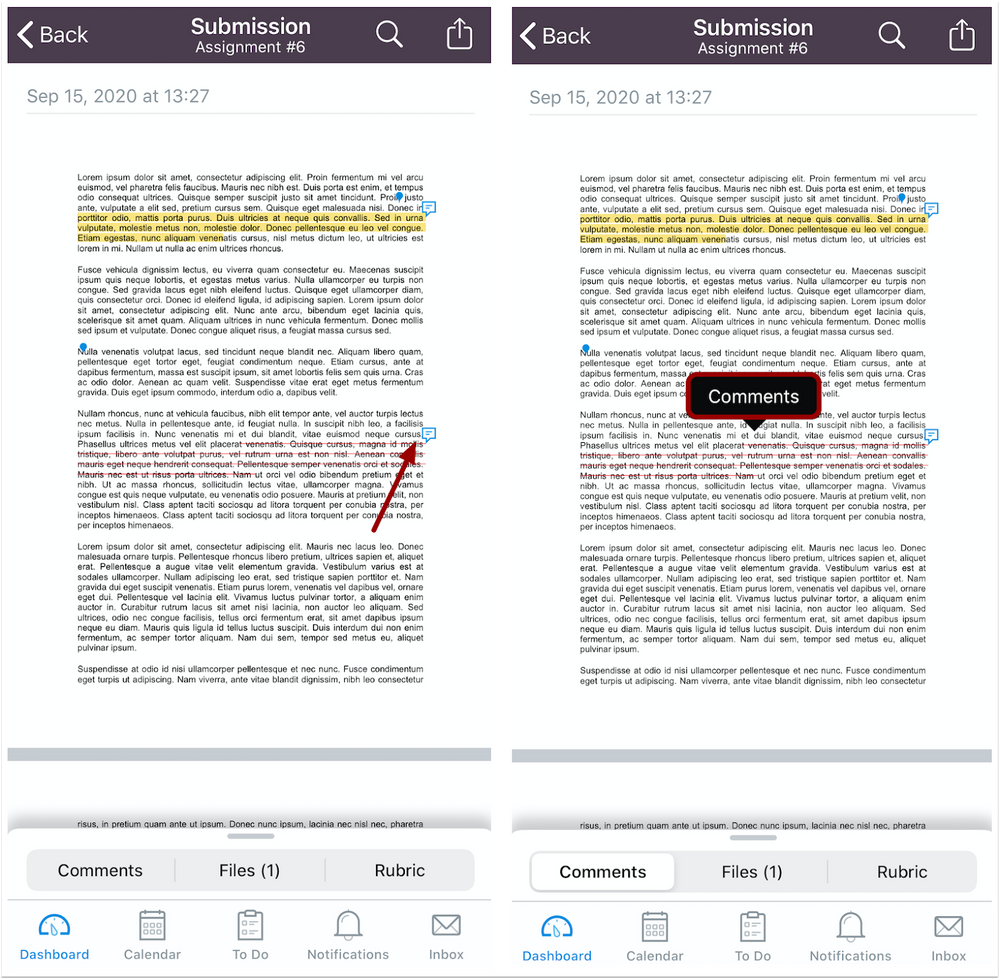 Comments in Annotations