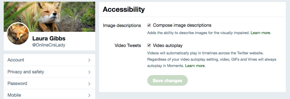 Twitter accessibility settings_ turn on image descriptions