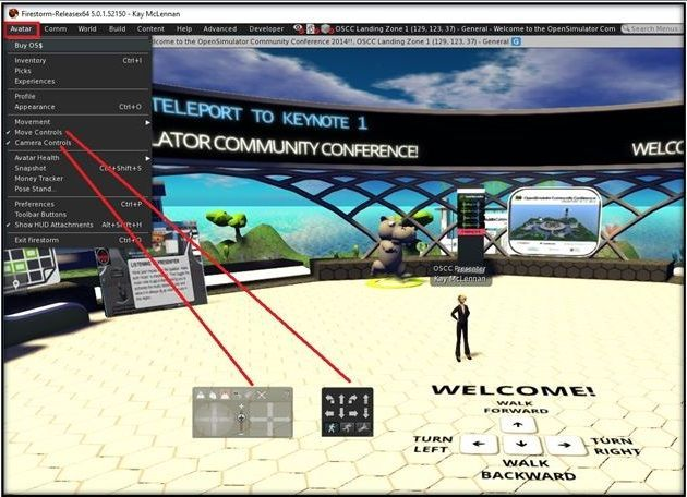 Viewer Controls.jpg