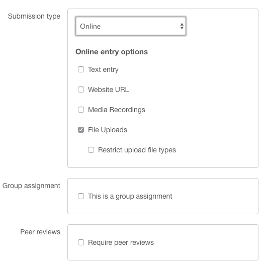 Screen Shot of online submission options within an assignment