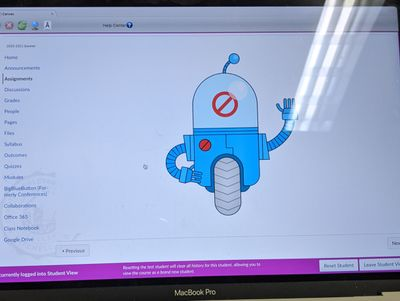 error robot on lockdown browser student view from administrator access